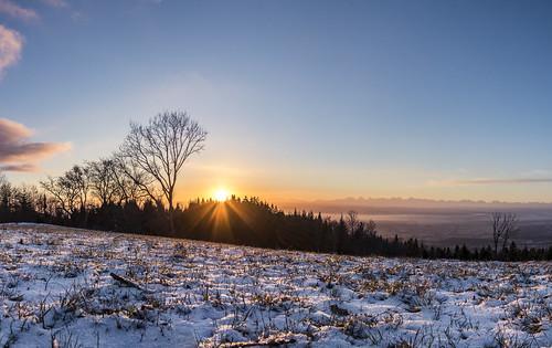 First Sun on Snow
