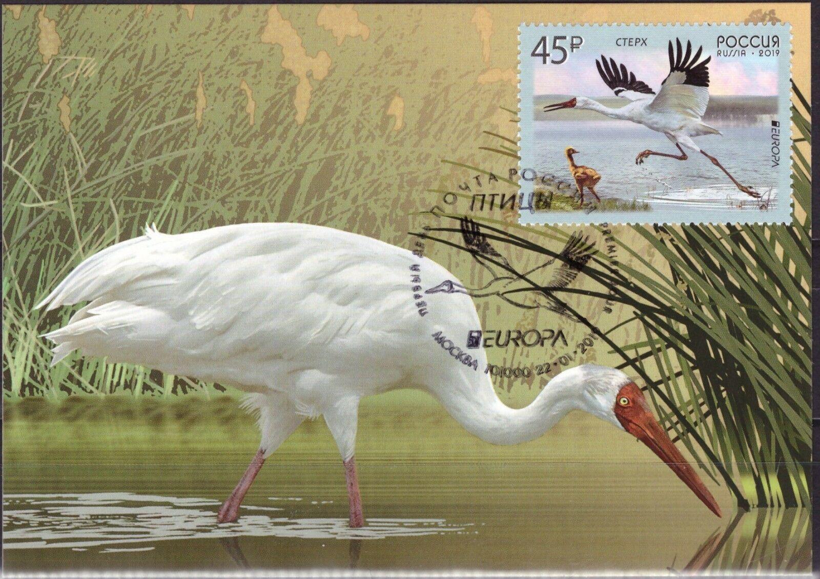 Russia - Europa 2019: National Birds (January 22, 2019) maximum card