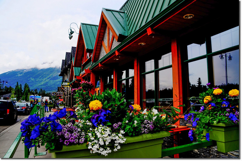 Town of Jasper (1)