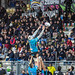 Challenge Cup 2018-19- Zebre vs Stade Rochelais-248.jpg by stede64