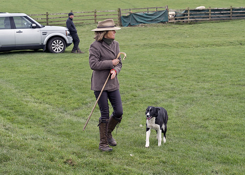 Pennine Interclub Championship sheepdog trials, Broughton, Skipton