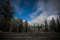 Glacier National Park-202