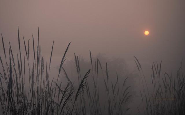 Sun rising_Patis Paton, Olympus E-M1, OLYMPUS M.12-40mm F2.8