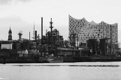 Alternativer Blick auf die Elbphilharmonie 06