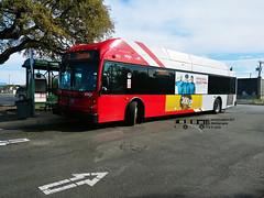 402 7 (4) Stone Oak Express