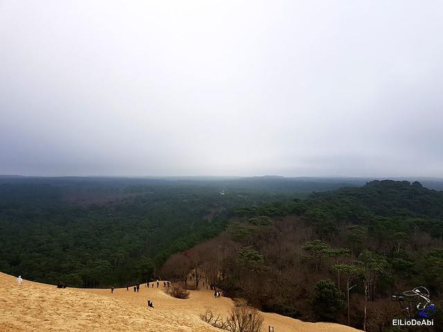 Duna de Pilat, la duna más grande de Europa 10