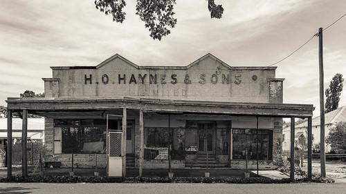 H.O. Haynes & Sons