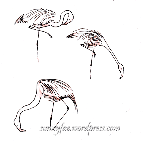 flamingo gesture sketches