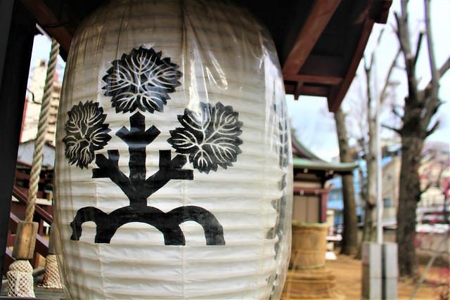 shinjukusuwa018
