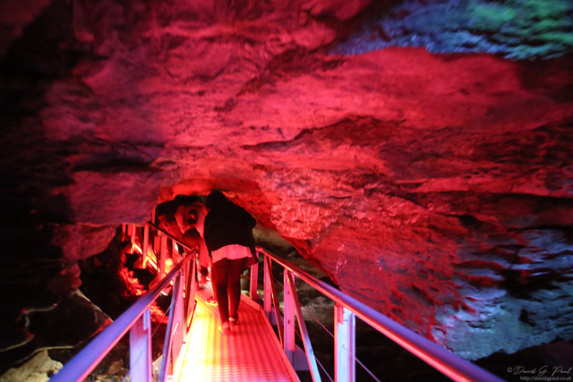 Entering the Glow Worm Caves