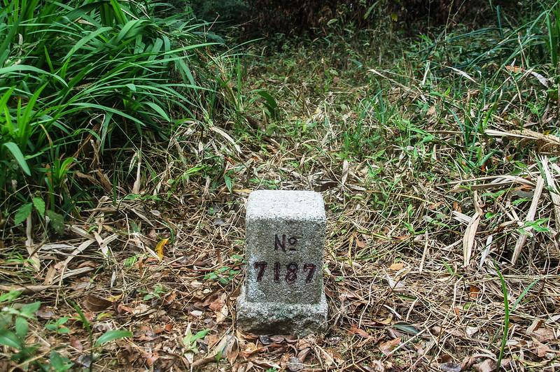 四社山三等三角點(# 7187 Elev. 1247 m)