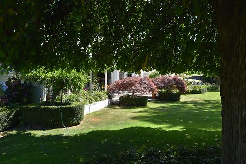 Back garden of B&B, Botanica Marlborough