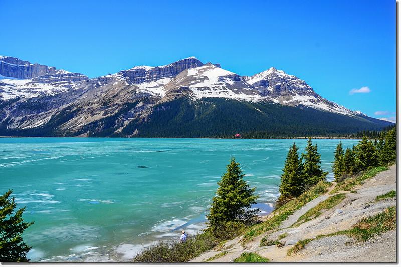 Bow Lake (7)