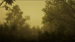 Red Dead Redemption 2_20190213092322