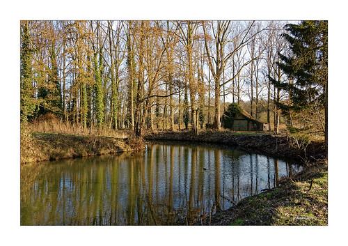 Ruine Bleijenbeek - Wassergraben