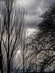 2019 Dark,windy day over the lake
