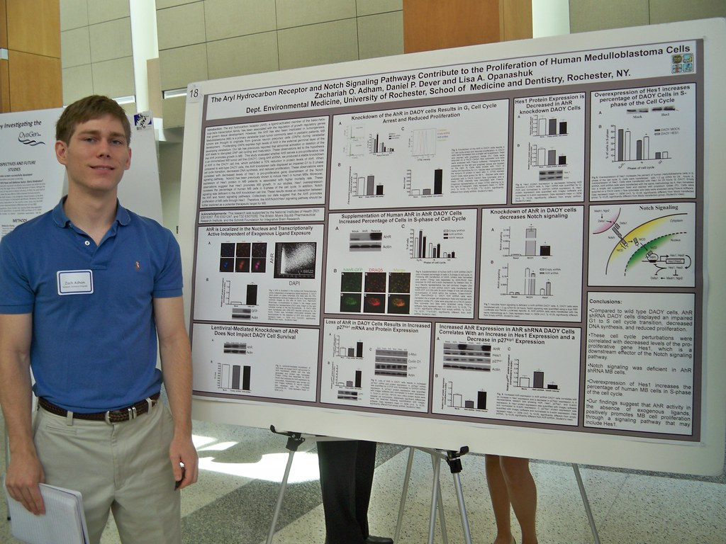 Summer Scholars 2012 - Poster Session