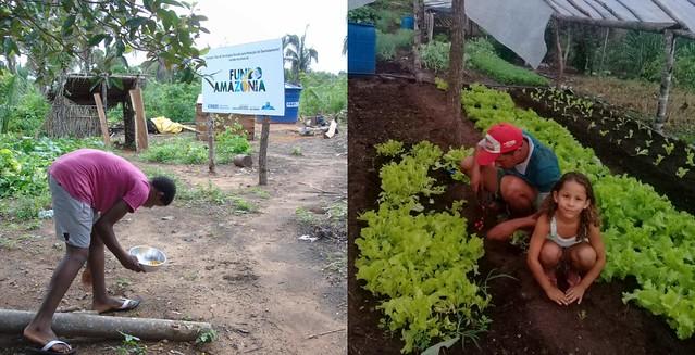 Atingidos por barragem produzem alimentos em acampamento no Tocantins - Créditos: Divulgação