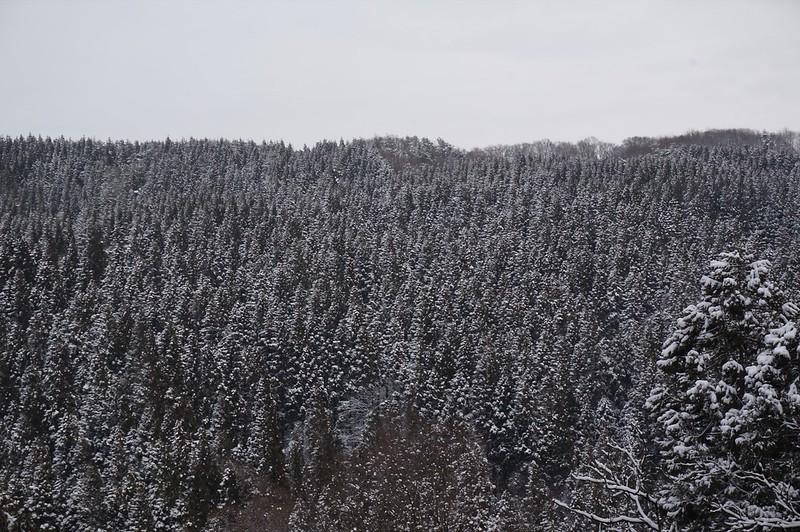 そしてまた雪景色に