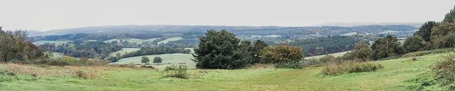 Albury Downs 31 October 2013 panorama.jpg