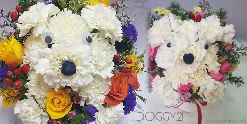 Doggy Bouquet Floral Garage Singapore
