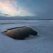 Ice Hole, Lake Mývatn