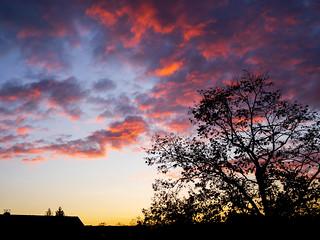 Sonnenuntergang in Lichtenrade