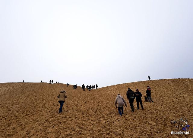 Duna de Pilat, la duna más grande de Europa 8