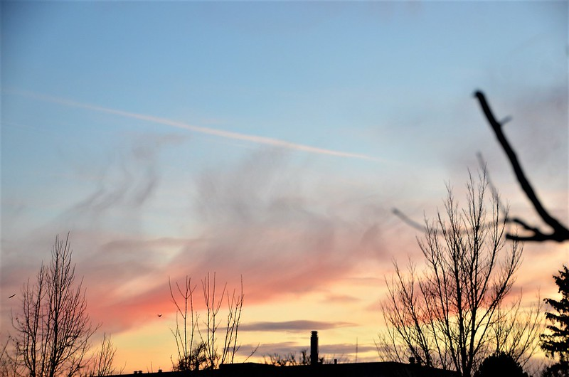 Afternoon sky 16.01 (3)