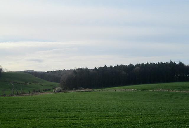Farmland , Cockburnspath, Scottish Borders