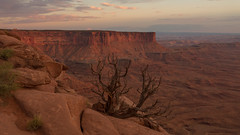 Canyonlands Sunset View