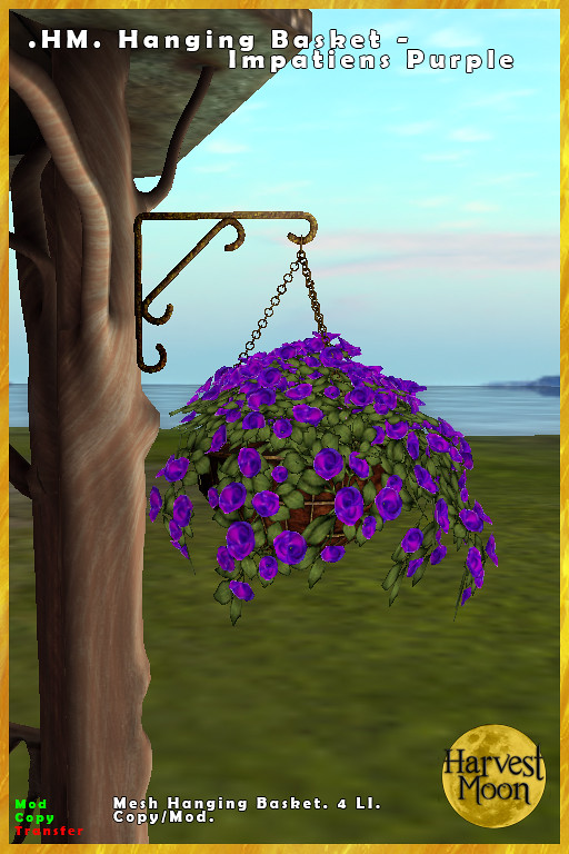 Harvest Moon – Hanging Basket – Impatiens Purple