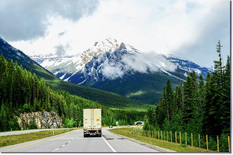 一號公路(Trans-Canada HwyAB-1)沿途雪景 3