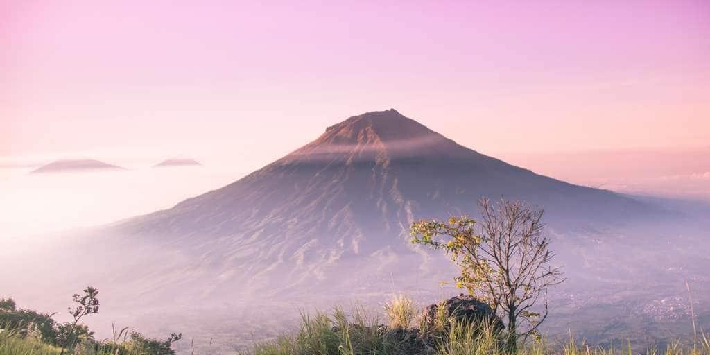 Les volcans seraient-ils responsables de la disparition des dinosaures ?