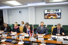 Видеоконференция между членами групп по сотрудничеству СФ и Сабора Республики Хорватии