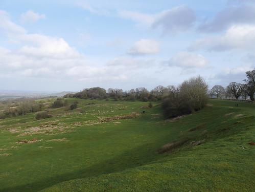 Dover Hill