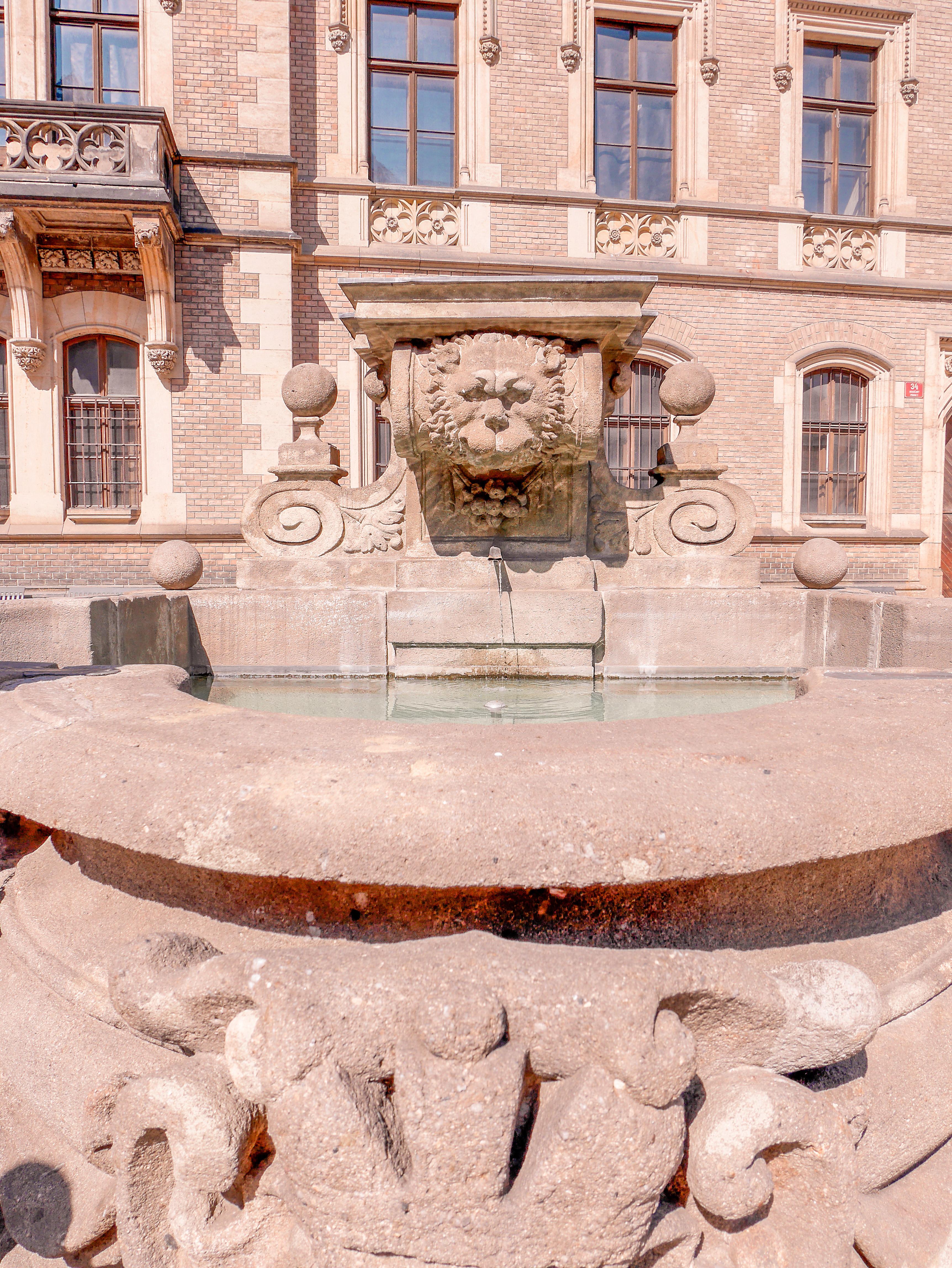 suihkulähde Vituksen katedraali