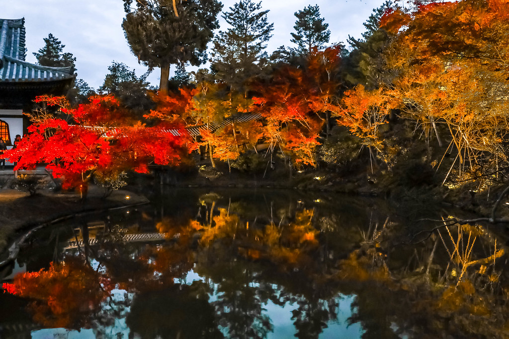 kyoto-temples-alexisjetsets-6