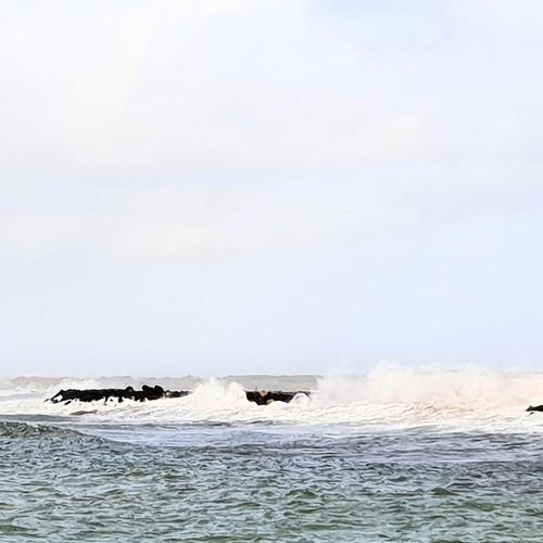 Al mare a Fiumicino