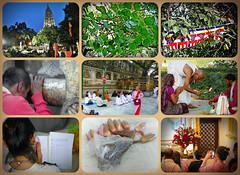 Bodhgaya, Mahabodhi Temple - collage