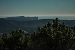 vue sur la cap Canaille, Cassis - Photo of Aubagne