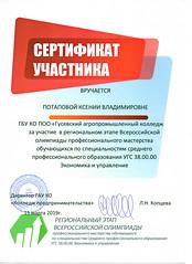 pdf171