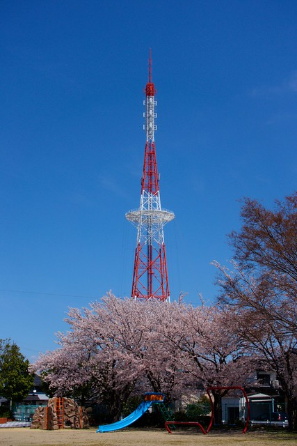 Photo:若松ちから石公園 By yuki_alm_misa