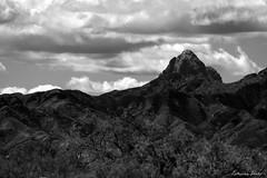Baboquivari Peak, Arizona