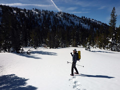 Ingrid breaking trail.