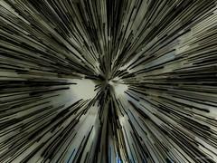Coup de zoom couleurs inversées - Photo of Chassé