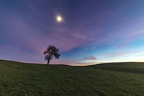 Quand le soleil laisse place à la lune...