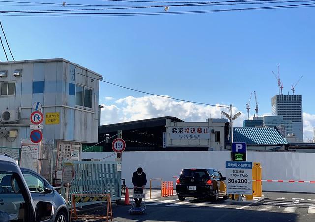 Tsukiji fish market 2018 47