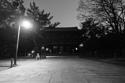 25-02-2019 Nara on morning (10)