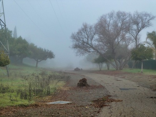 2019-01-10 - Landscape Photography, Nothing but Fog